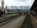 bijeli-vlak-kup-2014-(3)