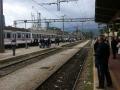 bijeli-vlak-kup-2014-(7)