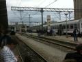 bijeli-vlak-kup-2014-(8)
