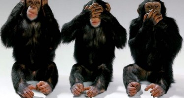 Tri mudra majmuna